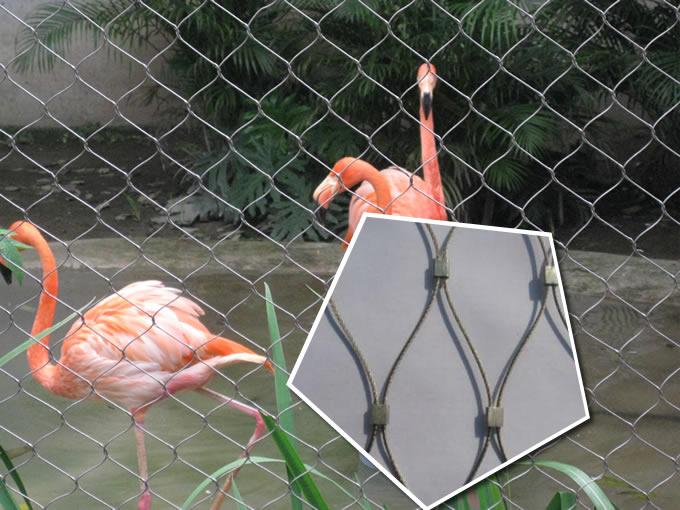 Bird Avairy Garden Netting Fence